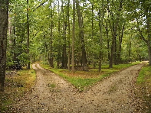 bigstock-Two-Paths-5130713